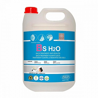 BS H2O