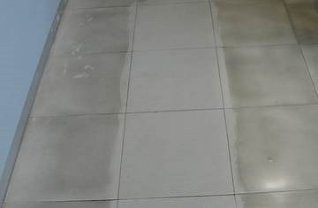 Tile Cleaner In Deep Cleaner For Tiles Faber
